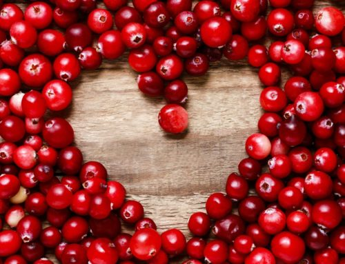 Cranberry Concentrate: The Final Answer to Preventing Painful, Dangerous UTIs